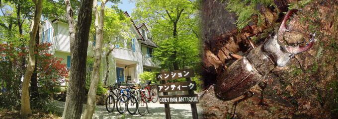 森の中の小さなお城 那須のペンション アンティーク
