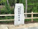 那須平成の森