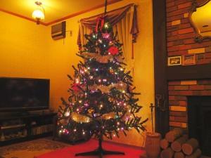 2mを超えるクリスマスツリー